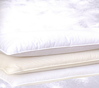 100% Cotton Pillow Case Protector