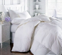 Allergy Shields down Comforter