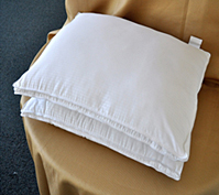 Embossed Microfiber Pillow